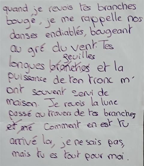 / Comment dire... - Projet de l'Atelier 14-16 ans mené par Élodie Brillon